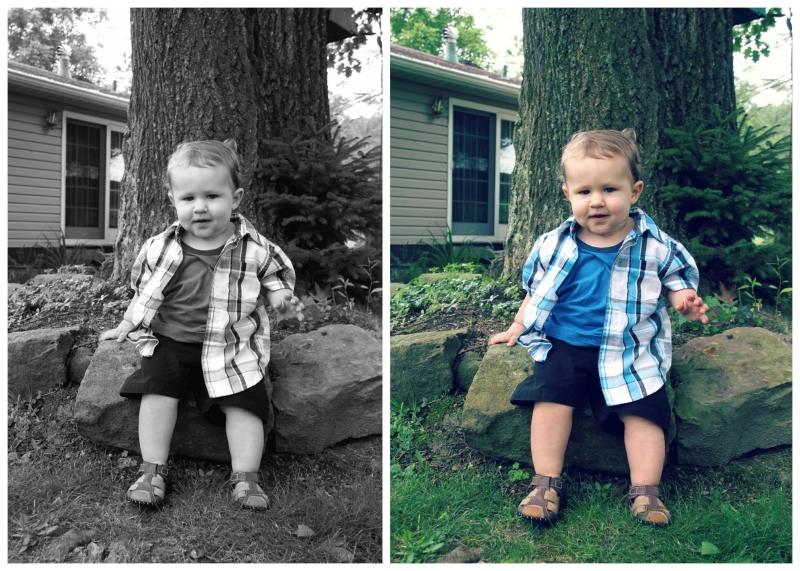Harris.Collage.5