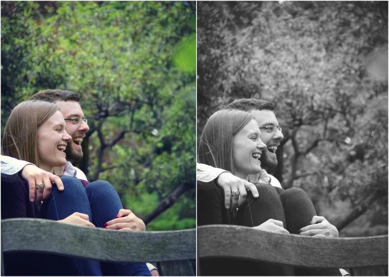 Garcia.Collage.3